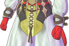 Fate Extella Link Special Set (4)