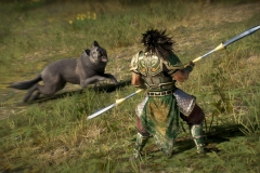 Dynasty Warriors 9 (3)